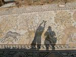 Мозаика на полу епископской резиденции в г. Гераклея