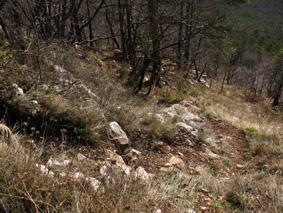 Вид тропы в месте нашего выхода на нее после ухода из ошибочного кулуара