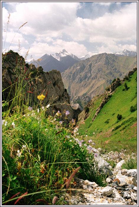 Кичик-Алай. На горизонті вершина з вузла Кош-Мойнок.