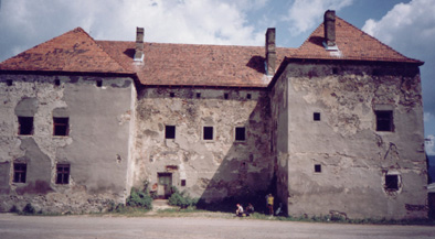 Чинадеевский замок...