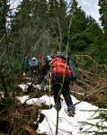 Підйом напряму через ліс