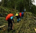 Підйом по лісовозній дорозі