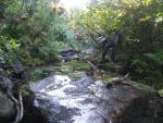 Спуск по річці