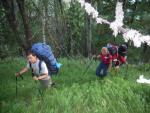 Підйом лісом на хребет Брічебор