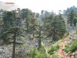 Фото 44. Тропа к пер.Тахталы