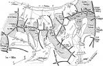 Схема южной части хребта Куршо