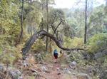 Підйом древнім шляхом у каньоні Гьойнюк
